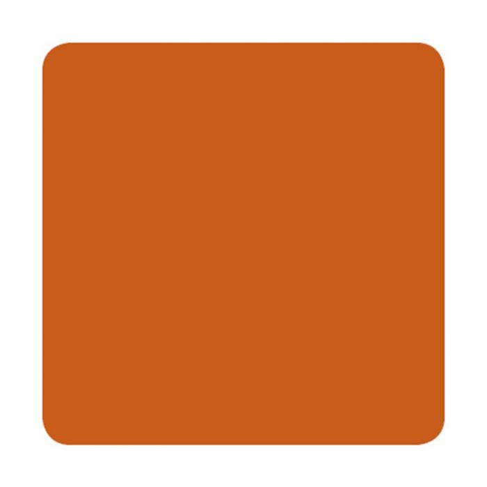 Eternal Muted Earth Tones 30ml (1oz) Burnt Orange muste